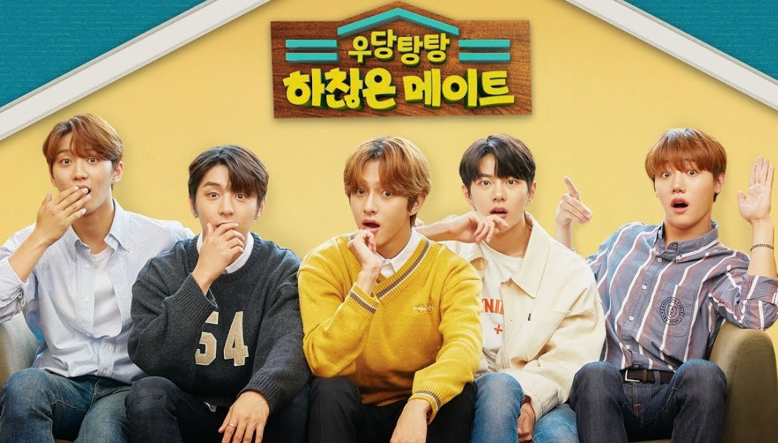Crash! Insignificant Roommates (2019)