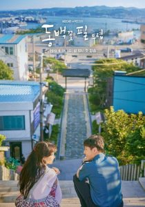 When the Camellia Blooms cast: Kong Hyo-Jin, Kang Ha-Neul, Kim Ji-Suk. When the Camellia Blooms (동백꽃 필 무렵) Release Date: 18 September 2019. When the Camellia Blooms Episodes: 40.