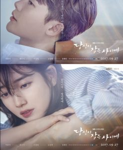 While You Were Sleeping cast: Lee Jong-Suk, Bae Suzy, Lee Sang-Yeob. While You Were Sleeping Date: 27 September 2017. While You Were Sleeping episodes: 32.